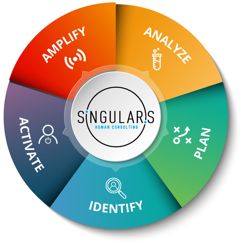 Singularis Social Media Global Framework
